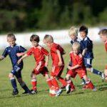 Training Nachwuchsbereich möglich